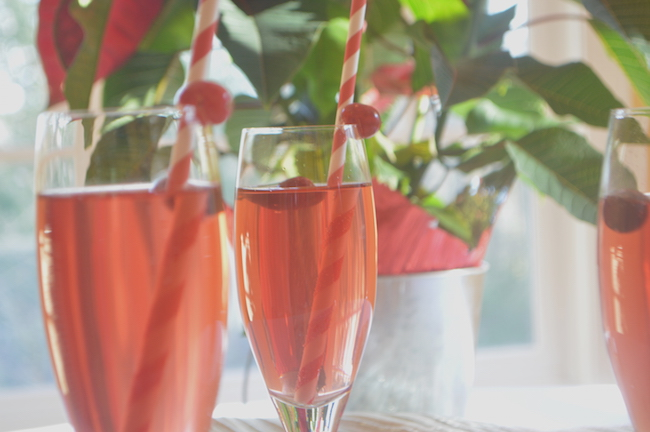 The Poinsettia Recipe
