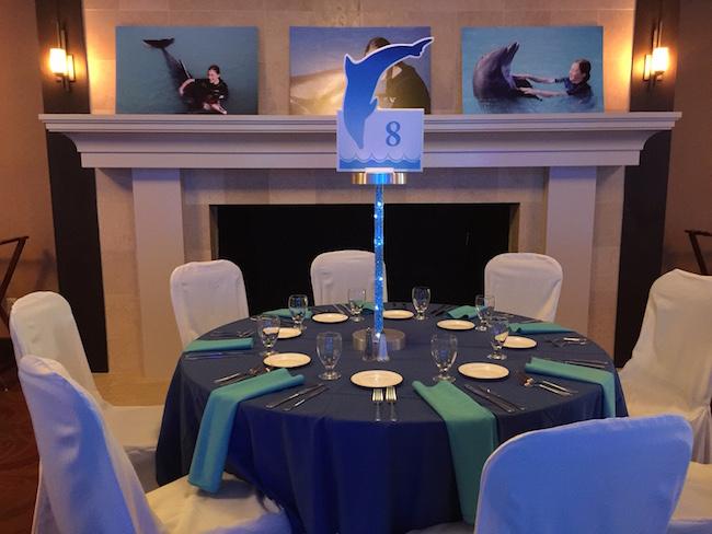 Dolphin Theme Bat Mitzvah